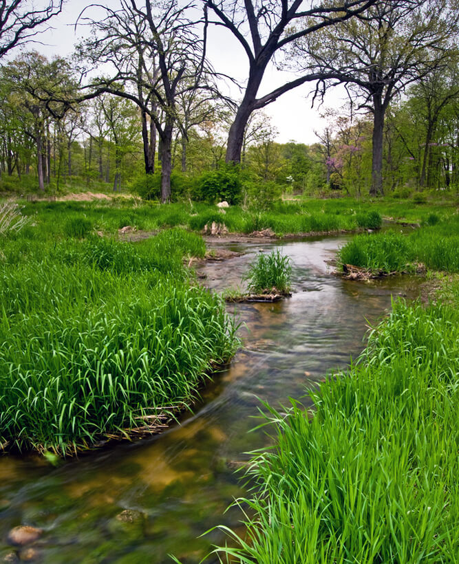 Willoway Spring Willoway Brook winds it's way through a spring landscape at The Morton Arboretum, Lisle, Ill.