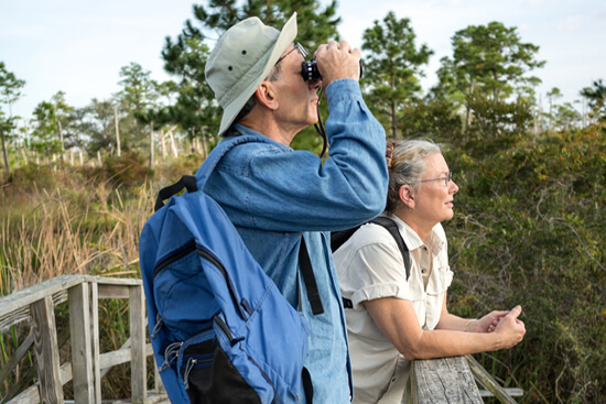 Retired couple birdwatching on an old wooden footbridge in Florida wetlands.